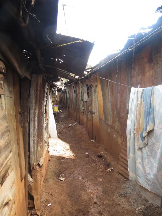 """The """"road"""" between homes in Kuwinda Karen."""
